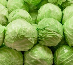 Cabbage Featured Image
